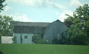 See-Thru Barn!